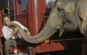 robert_pattinson_rosie_water_for_elephants2