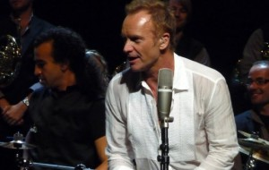 sting2 (2)