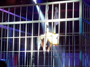 suicide squad cage
